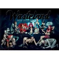 Wasteland 25-11-2017