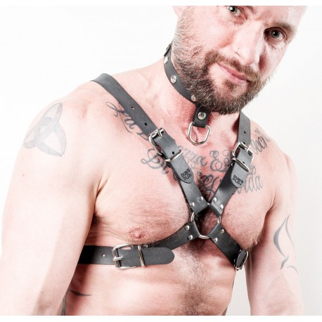 Crossed Buckled Harness