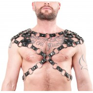 Twin Shoulder Ring Harness